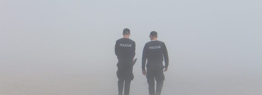 Plural policing during health emergencies and natural disasters